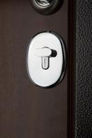 Regidoors Металлическая дверь Карбон чёрная мозайка с молдингом